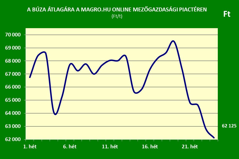 Búza ár 24.hét Magro.hu