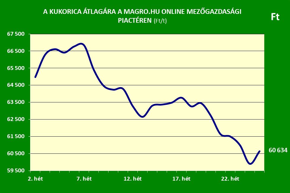 Kukorica ár 25. hét Magro.hu