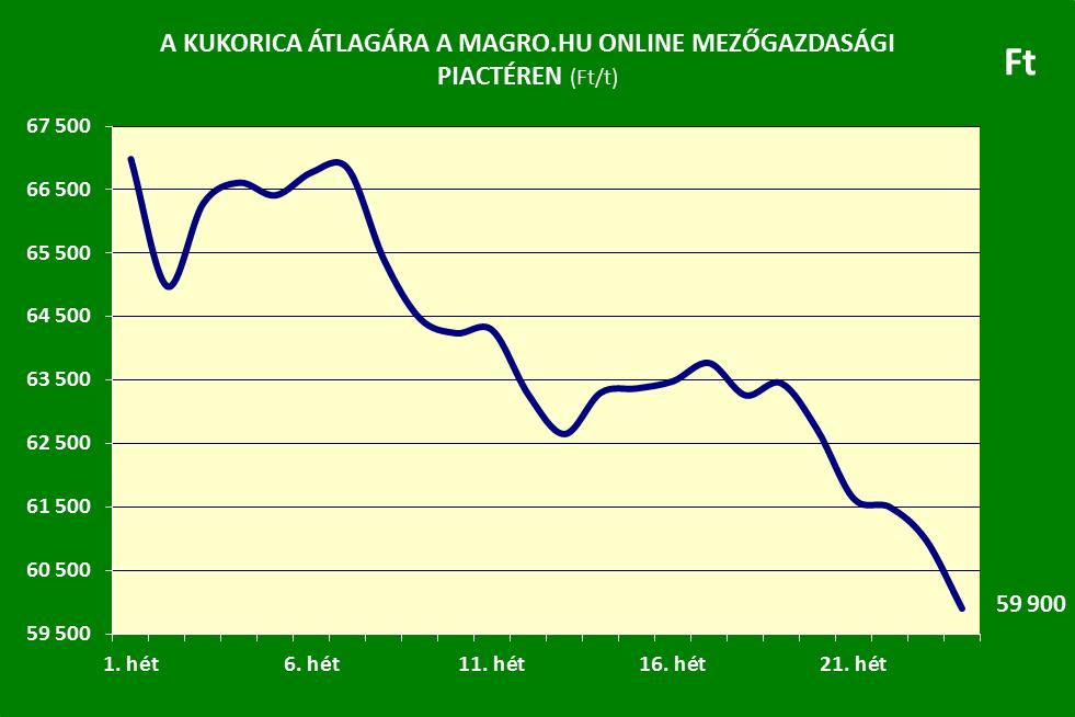Kukorica ár 24.hét Magro.hu
