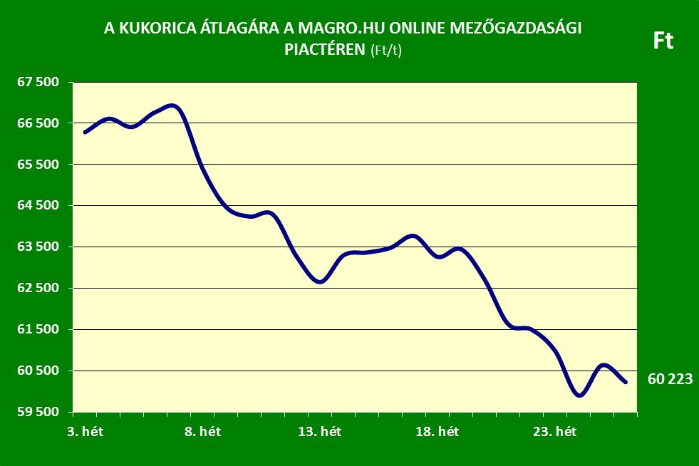Magro.hu kukorica ár 26. hét