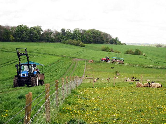 Nőtt az egyéni gazdálkodók földterülete