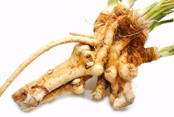 """A torma angolul horseradish, ami szó szerinti fordításban """"lóretket"""" jelent."""