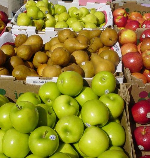 A Magro.hu piactéren eddig almából volt a legnagyobb a választék. Vajon idén is marad ez a tendencia?