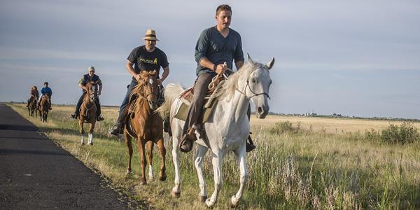 Nagy ívben, óvatosan kell kikerülni autóval a lovakat!   Fotó: lovasok.hu