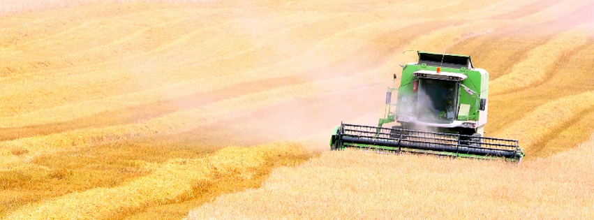 Jól állunk az aratással, jók a terméskilátások is.