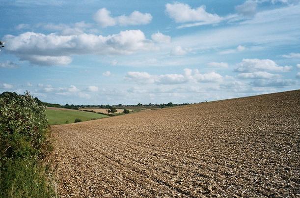Vége a vitának, rendeletbe foglalták, hogy az 1200 hektár feletti területek támogatását elvonják.