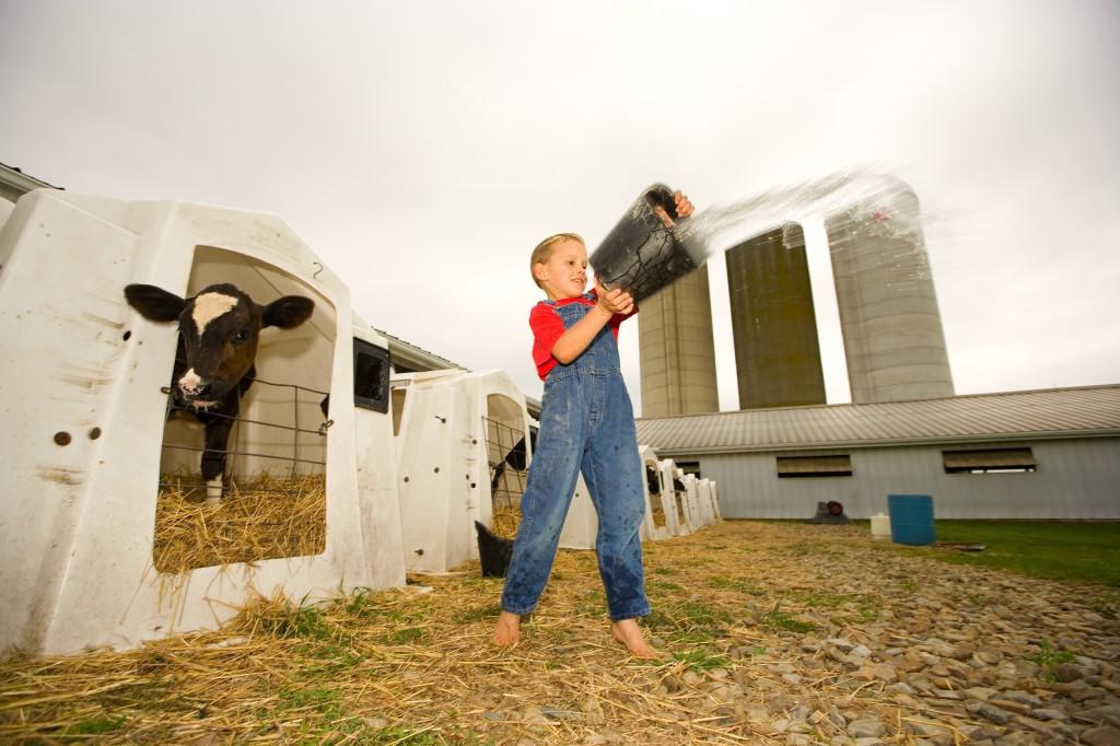 Ha elmúlt 18 éves, és rendelkezik megfelelő agrár végzettséggel, ő is szerezhet majd fiatal gazda minősétést