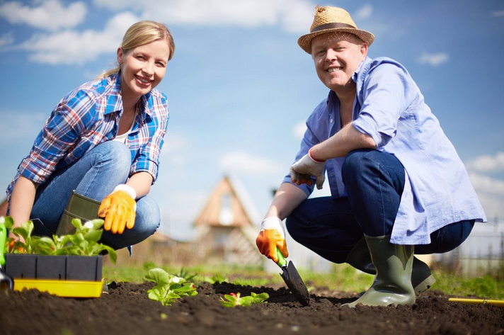 Tanulja meg a zöldségtermesztés fortélyait, jelentkezzen a Városi kertészek mozgalomra!