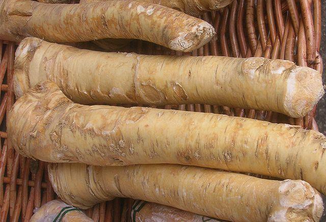 A torma egyaránt kiváló gyógy- és fűszernövény