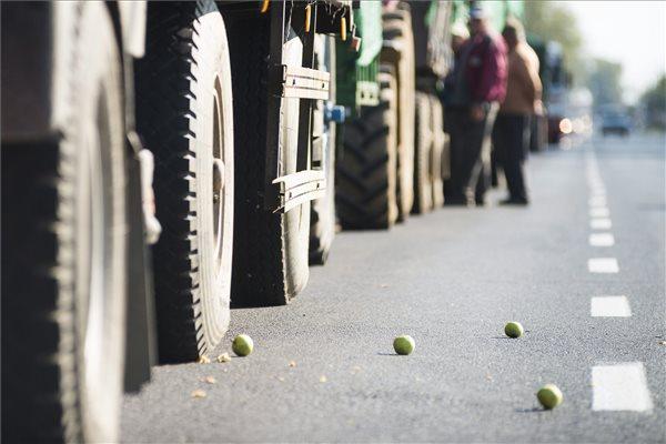 Almatermelők és fuvarosok állnak almával megrakott járműveikkel Mátészalkán, a Jármi utcában Fotó: Balázs Attila (MTI)