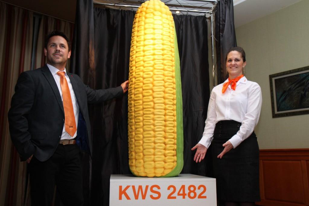 Lelepleződött a KWS új kukorica hibridje!