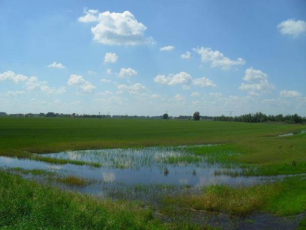 Sok helyen belvíz borítja a bevetendő termőföldeket