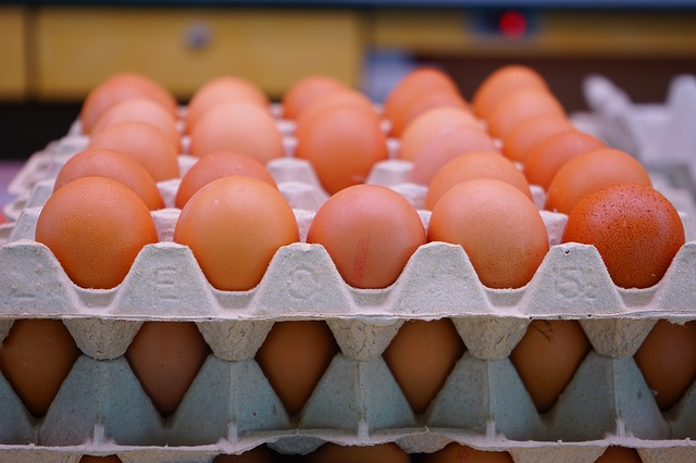 A tojás exportja 7,7 százalékkal emelkedett az Európai Unióban