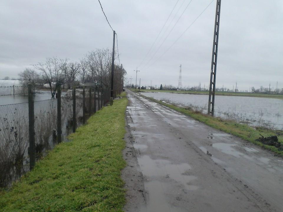 Csongrád megyében is sok a víz! Fotó: Fodor Diána
