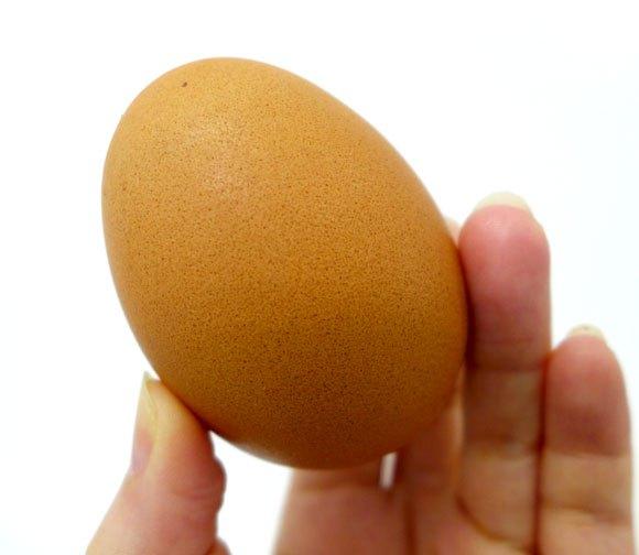 Külsőleg ugyan olyan, mint egy hagyományos tojás! Fotó: en.rocketnews24.com/