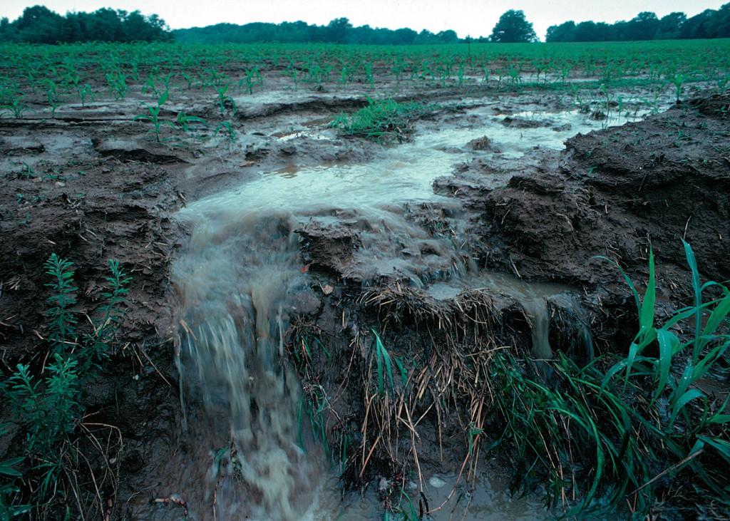 A belvíz miatt akár a támogatások is elúszhatnak