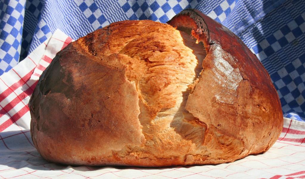 Az adományozott búzából sül idén is a Magyarok kenyere, amely minden megyei jogú város ünnepségén ott lesz