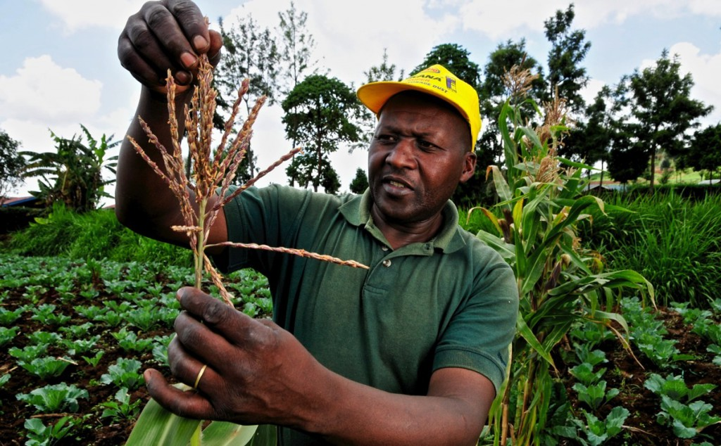 Nem csak az afrikai termelőket érinti a változás.
