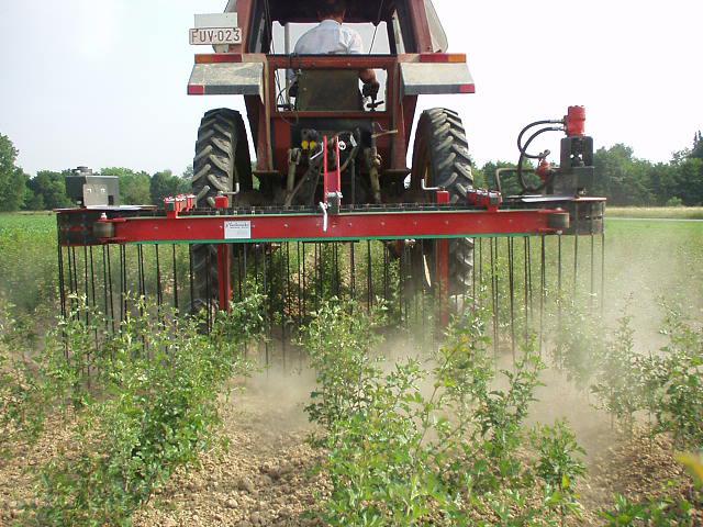 Vegyszerek helyett mechanikai gyomirtás - ez az ökológiai gazdálkodás egyik alapja