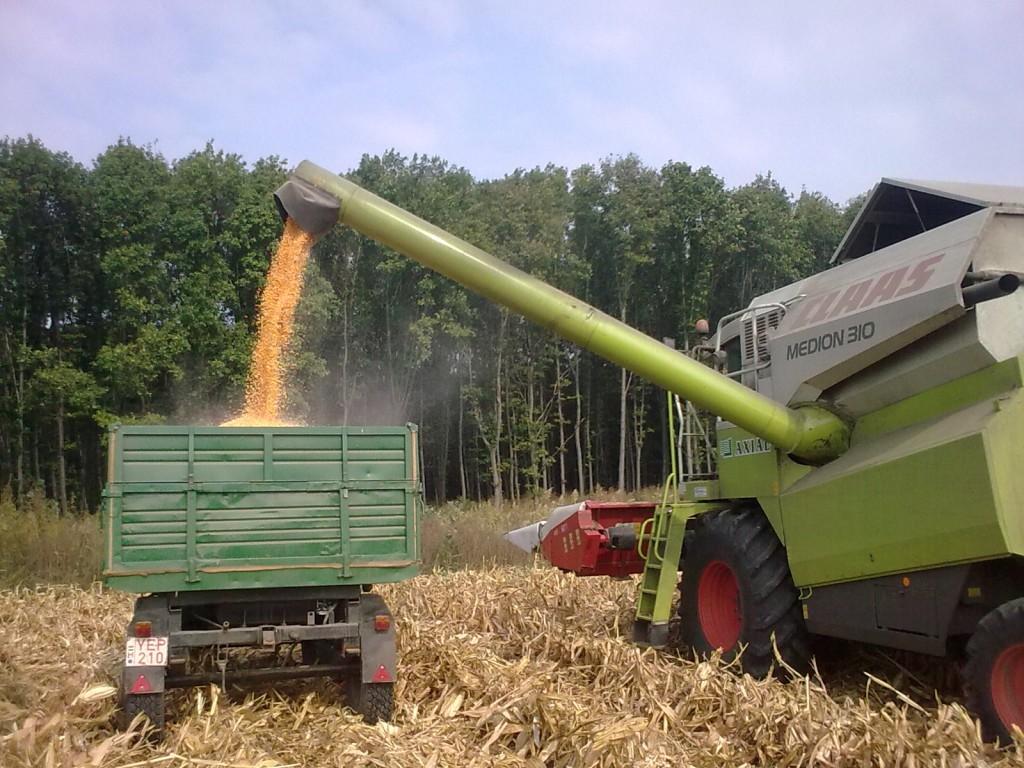 Egyre több helyen kerülnek fel a kukorica adapterek a kombájnokra