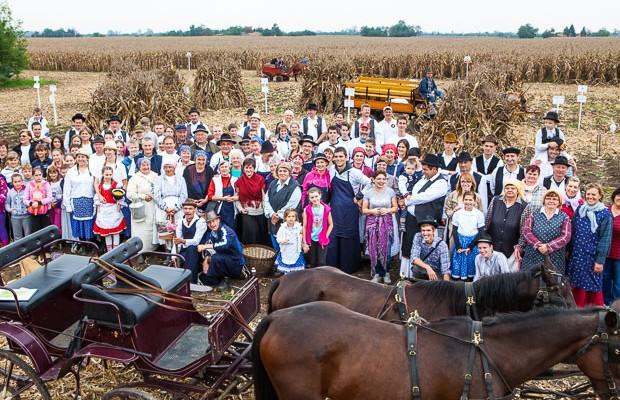 A kukoricanap már hagyománnyá vált Csabacsűdön