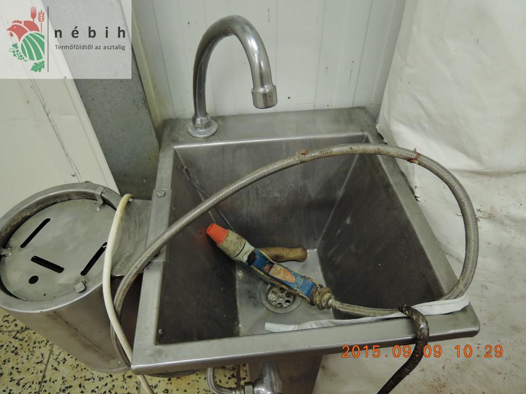 A vizsgált vágóhíd finoman szólva sem felelt meg a higiéniás követelményeknek