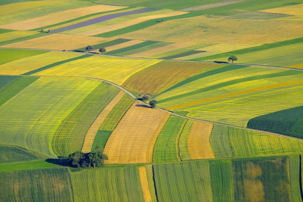 Sok törvény egyszerűsödhet és több jogszabály is megszűnhet a következő hónapokban. A cél a gazdák kötelezettségeinek enyhítése, egyszerűsítése (Fotó: vadaszlap.hu)