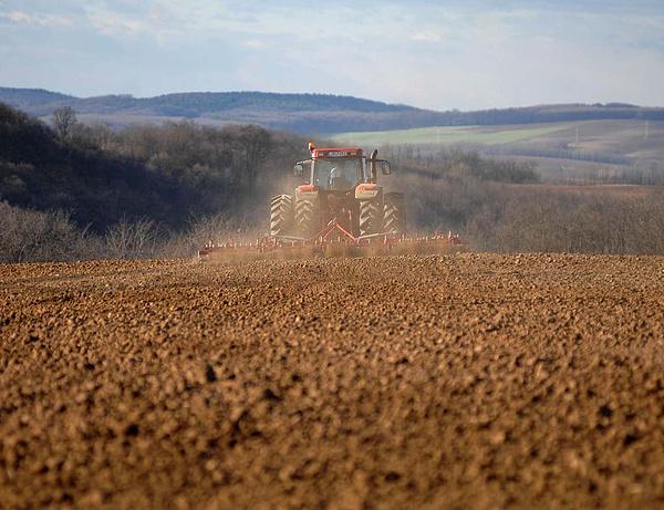 Voltak olyan termőföldek, amelyek nem találtak gazdára (Fotó: napi.hu)