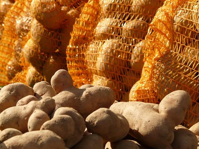 A burgonyát zsákostól a legegyszerűbb a pincében tárolni