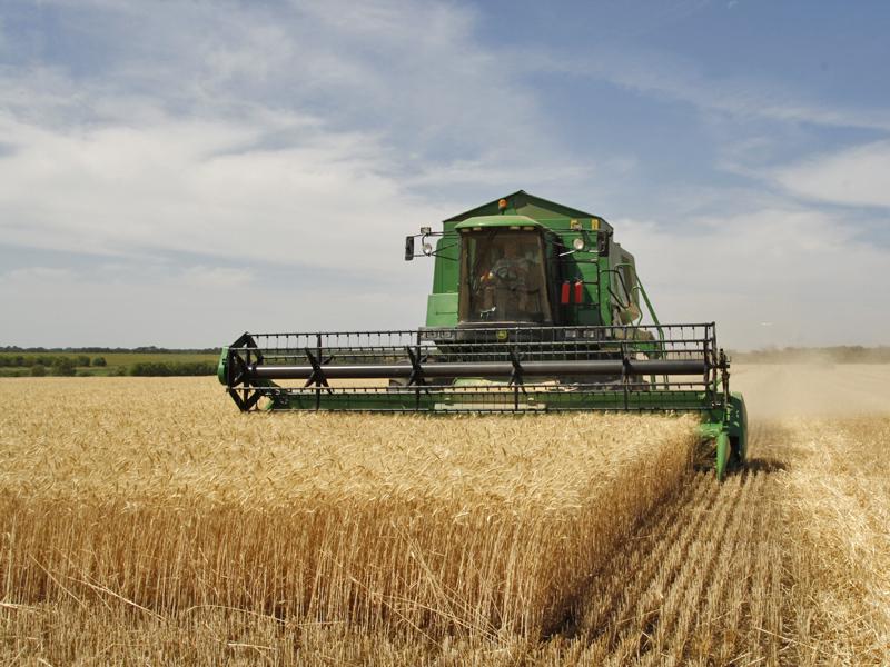 A növénytermesztést súlytotta leginkább a mezőgazdasági termelés volumenének csökkenése