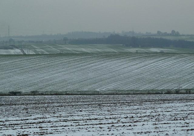 Télen ez a normális. A hóval borított szántóföldeken könnyebben telelnek át a növénykultúrák.