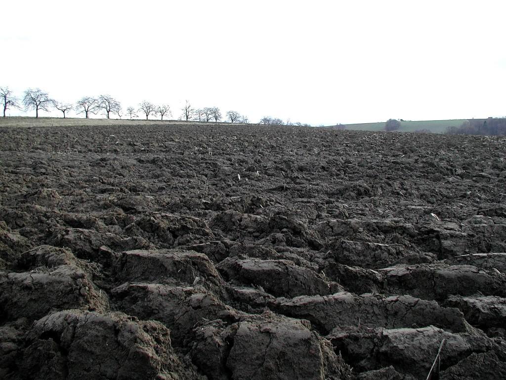 A megfelelő talajművelés is segíthet a váratlan időjárási körülmények negatív hatásait gyengíteni