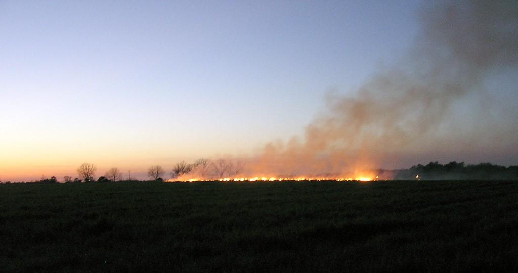 A mezőgazdaságban is komoly károkat tud okozni egy tűzvész