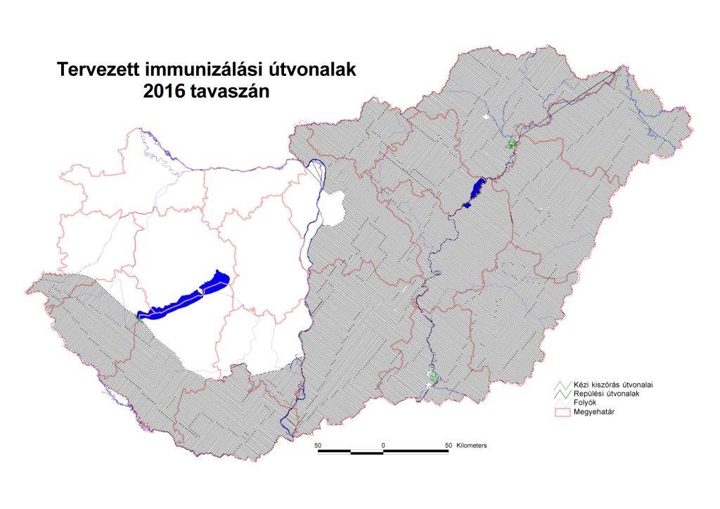 A térképen a róka immunizálás tervezett útvonalai és az érintett területek láthatóak (Forrás: nak.hu)
