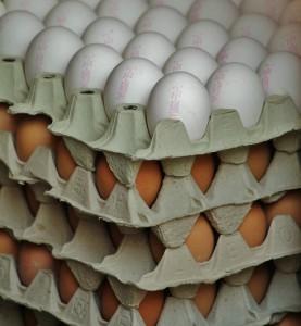 Egyre kevesebb tojást vásárol Magyarország a nemzetközi piacokról