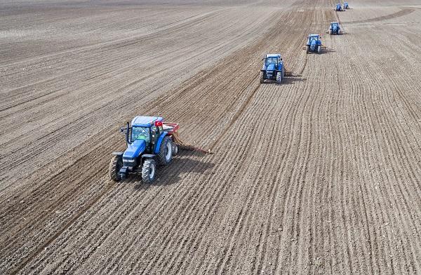 A vetőmagok minőségén múlhat, hogy tudunk-e alkalmazkodni a növekvő népesség növekvő élelmiszer igényéhez (Fotó: shutterstock)