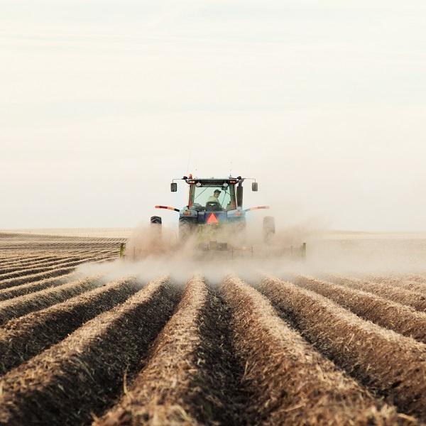 Kilátástalan helyzetben vannak a német gazdák (Fotó: Shutterstock)