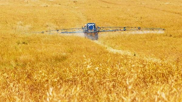 Egyre kevesebb növényvédő szert vesznek a gazdák, így a Monsantonak épp kapóra jönne ebben a nehéz helyzetben, ha értékesíteni tudná részvényeit
