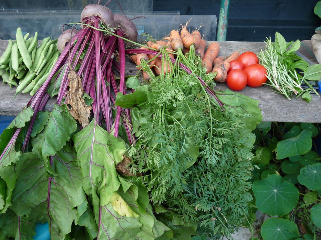 Jelentősen csökkent a zöldségfélék ára