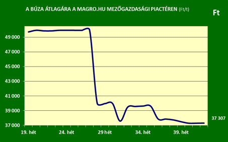 A búza átlagára a Magro.hu mezőgazdasági piactéren