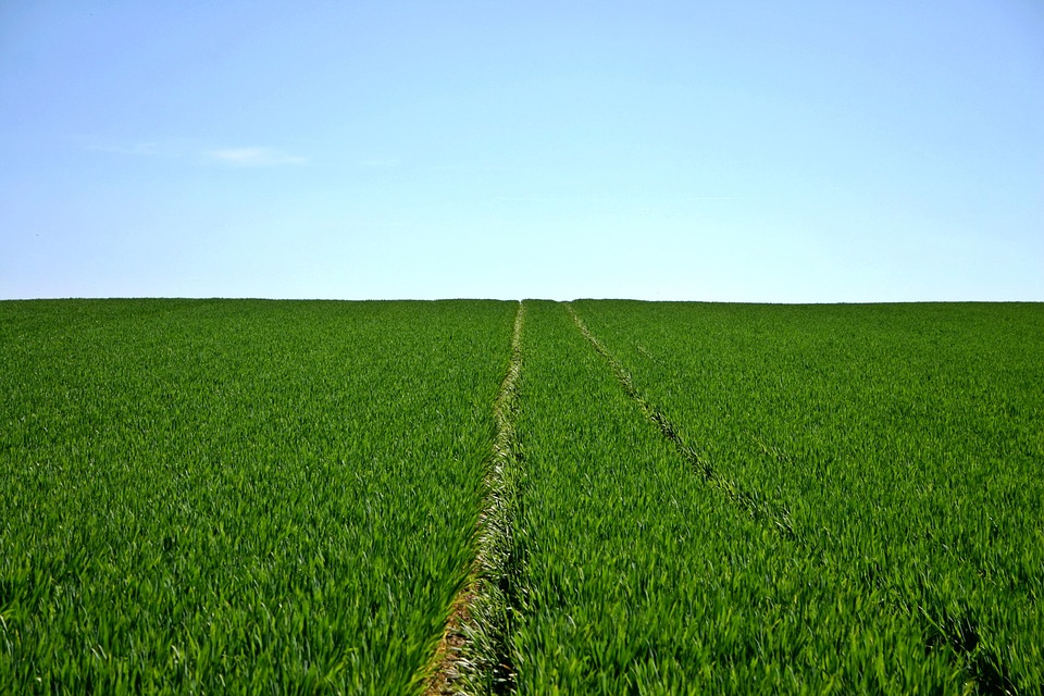 Támogatással segítik a gazdákat az éghajlatváltozás hatásainak kivédésére