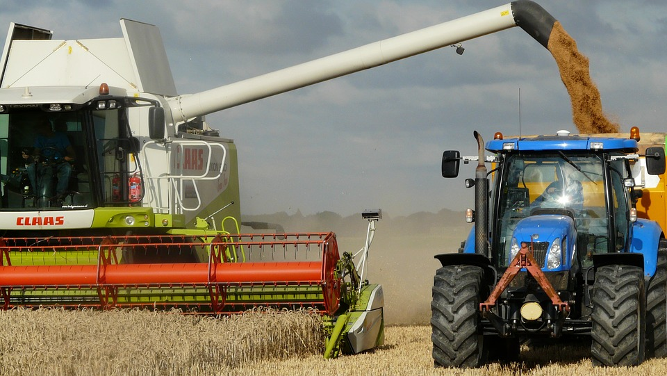 Feléledhet az európai gabonapiac? Sokan ezt várják!