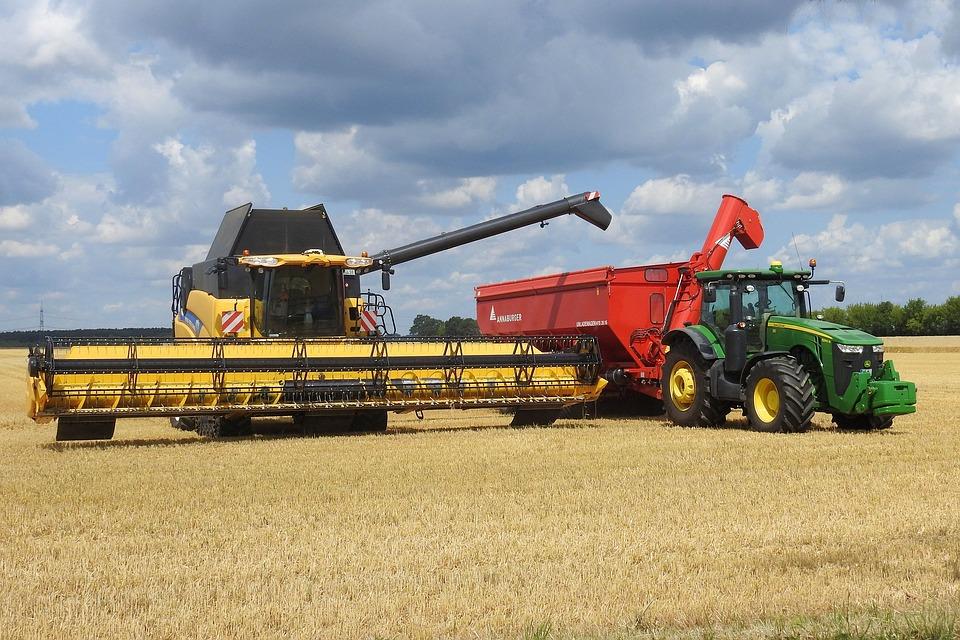 Ma azonban már légkondícionált, GPS vezérelt gépekkel dolgoznak a gazdák.