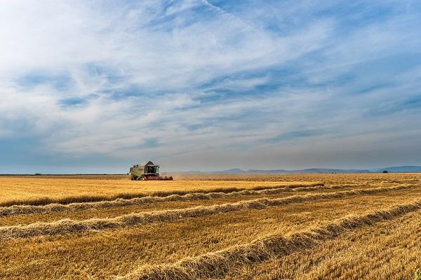 Továbbra is 40 ezer euró üti a fiatal gazdák markát!