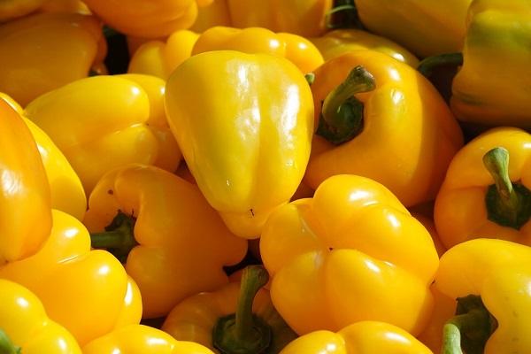 Jó hír a paprikatermesztőknek, emelkedett idén a paprika termelői ára