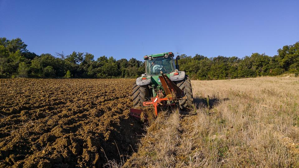 Sokan ezt a képet látják maguk előtt, ha mezőgazdaságról van szó