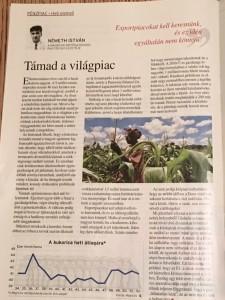Németh István, a Magro.hu ügyvezetőjének cikke a Figyelő című hetilapban.