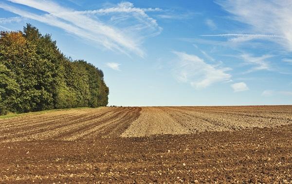 Már csak pár hétig lehet leadni a gazdálkodási naplót!