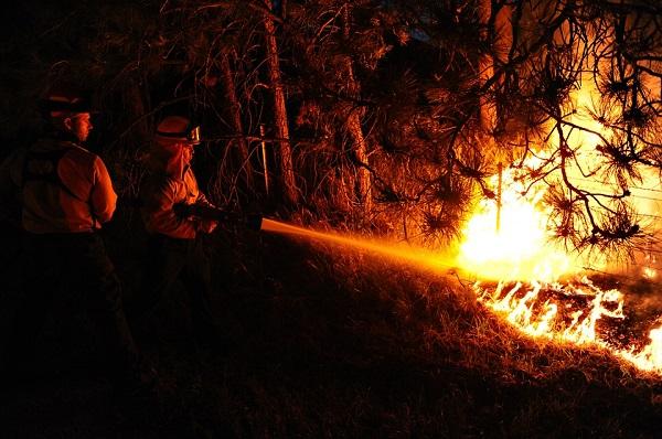 Az erdőtüzek akár a mezőgazdasági területekre is átterjedhetnek
