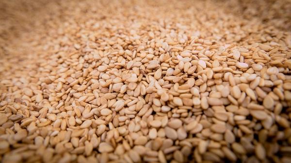 A jövőben könnyítenek a GMO-mentesség szabályain